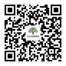 1491784329994705.jpg