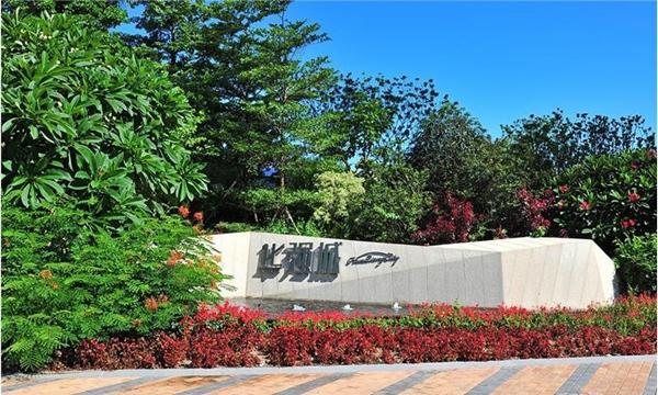 凯创园林园林设计中的植物搭配|景观树|行道树|厂区绿化