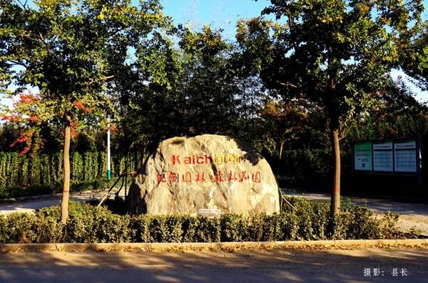 凯创园林海棠61.jpg