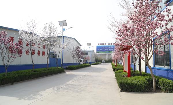 厂区绿化园林绿化通用树种2.jpg