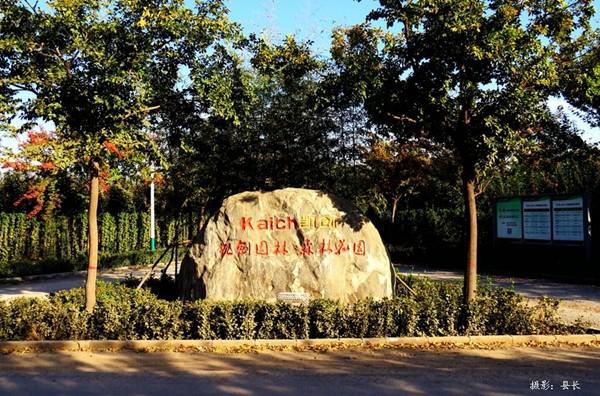 山东淄博园林公司厂区绿化1.jpg