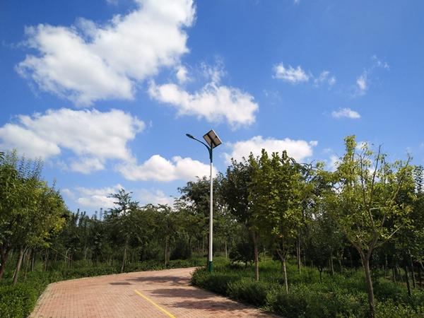 山东淄博凯创园林1.jpg