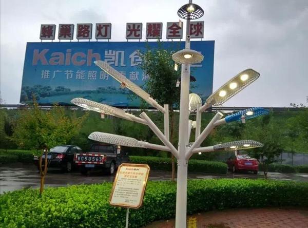 山东淄博凯创园林文化2.jpg