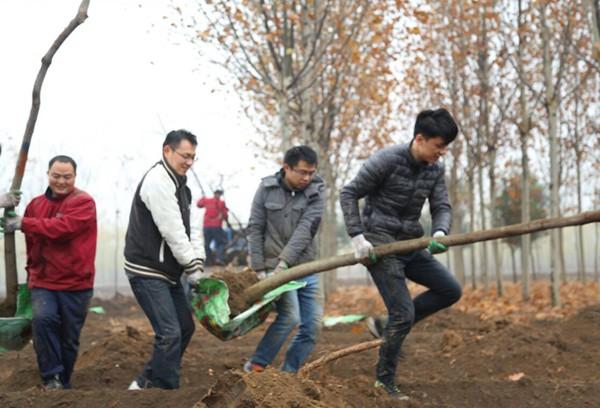 山东淄博凯创园林苗圃1.jpg